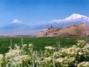 Ararat (9)